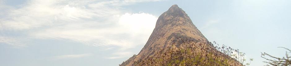 mallikarjuna-temple